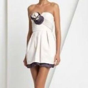 BCBG Strapless Runway Dress